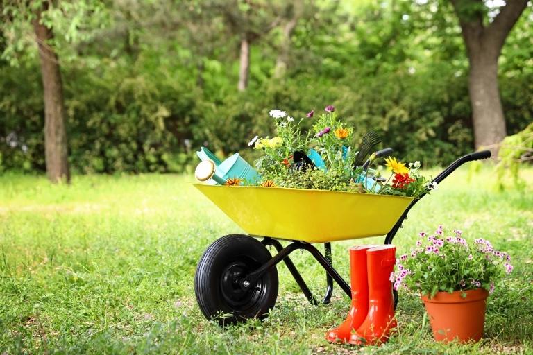 Eine gelbe Schiebetruhe in einem Garten voll mit Pflanzen und Gartenpflegezubehör