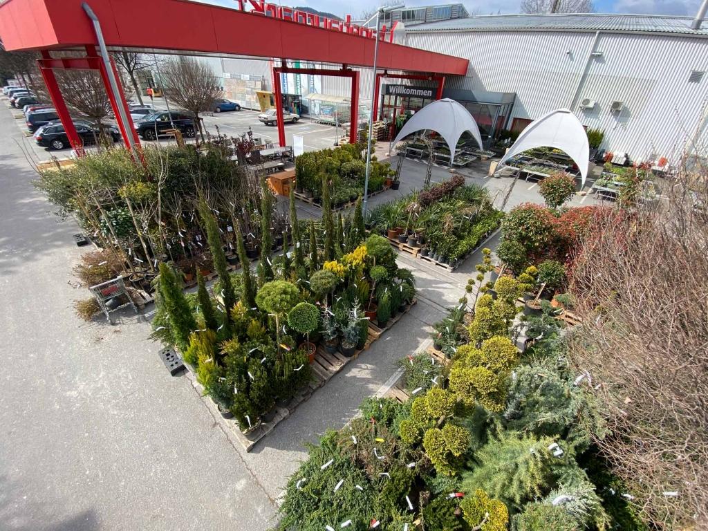 Vogelperspektive des Aufbaus der mediterranen Pflanzen vor dem Eingang des hagebau Lieb Markt Graz-Nord